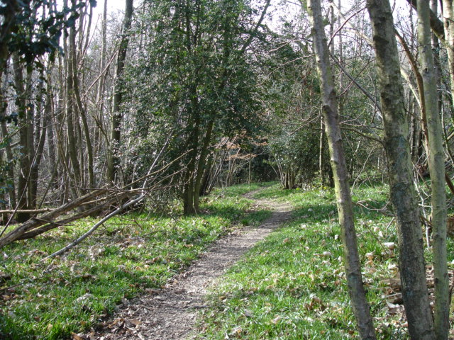 St Dunstan's Wood Cade Street East Sussex