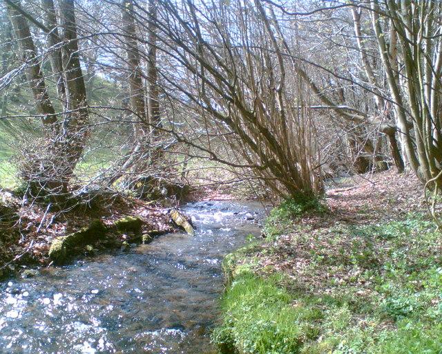 Unnamed stream near Nannerch