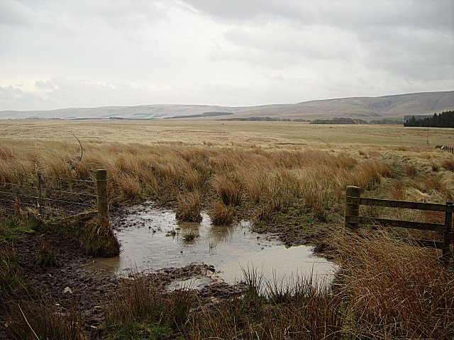 Gateway to the bogs.