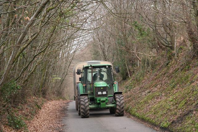 Huish Champflower: lane at Huish Cleeve