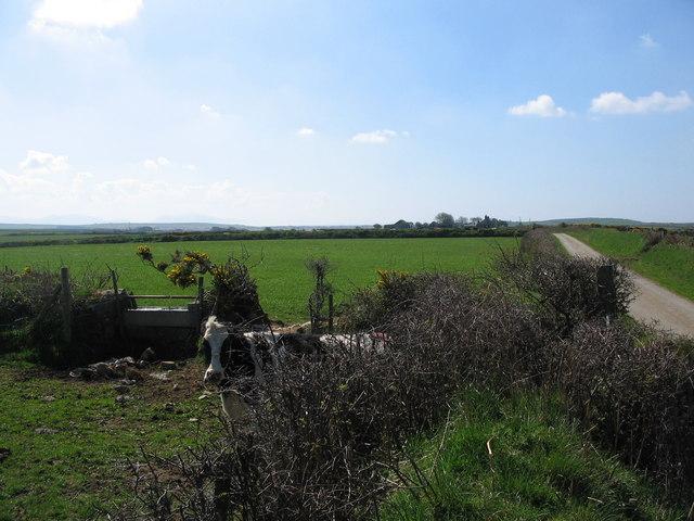 Anglesey farmland