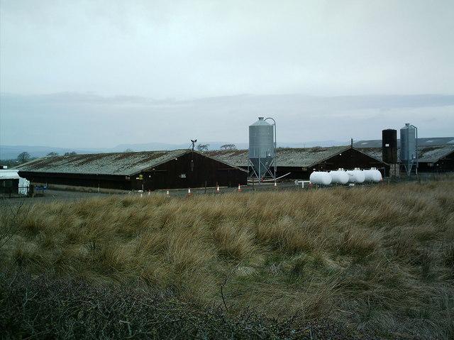 Jameston Moss Farm