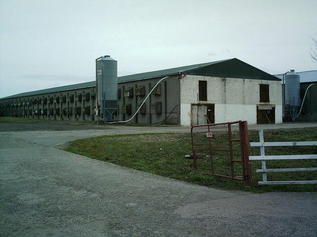 Arranview Farm