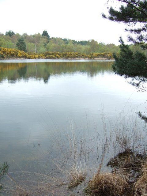 Lake at Chobham Common