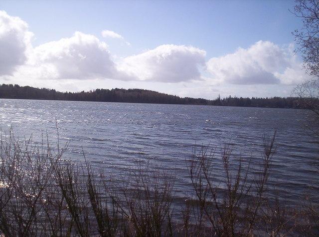 Loch of Lintrathen Nature Reserve