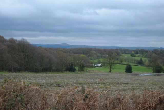 Farmland near Alderley Edge