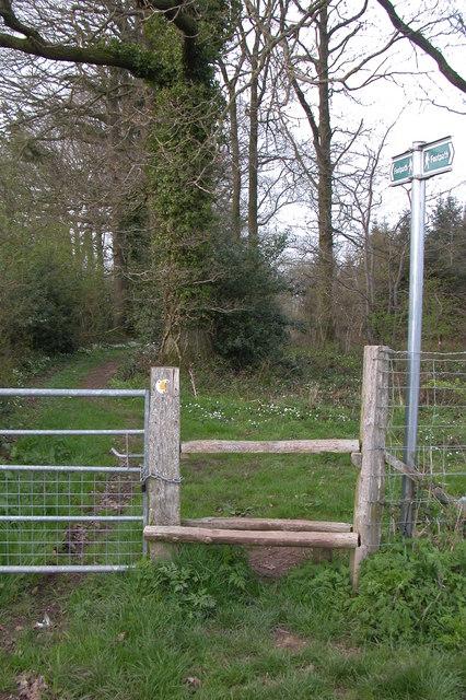 Footpath into Wallbrook Wood