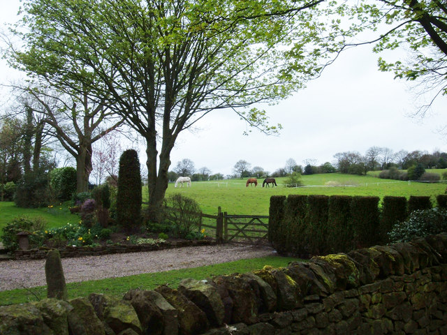 Pasture, Bradford House Farm