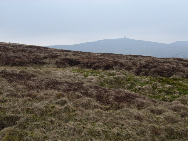 Looking west from Moss Burn