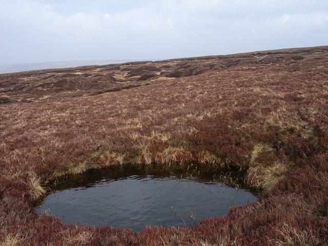 Moorland pool near Rough Sike