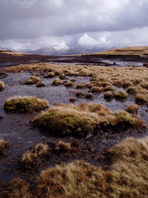 Peat bog between Beinn Odhar and Meall Buidhe