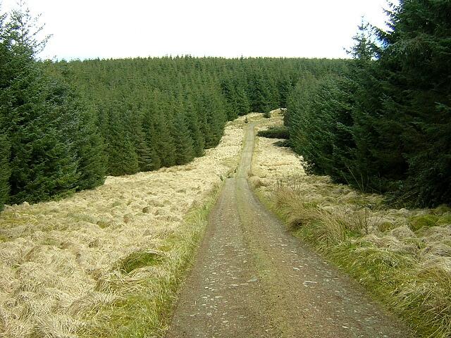 Southern Upland Way at Black Burn