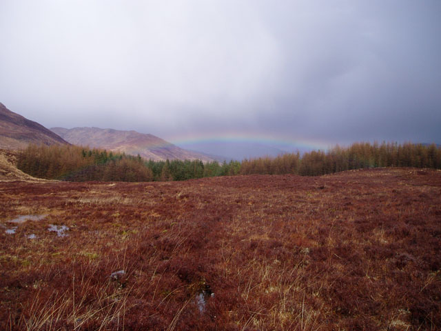 Peat bog above Lochcarron