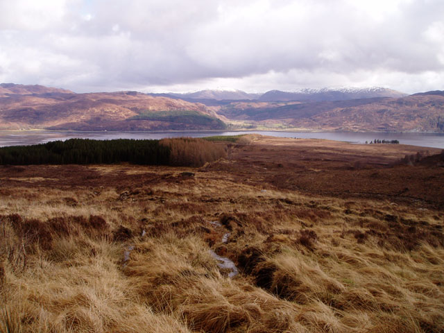 Slopes of Glas Bheinn above Lochcarron