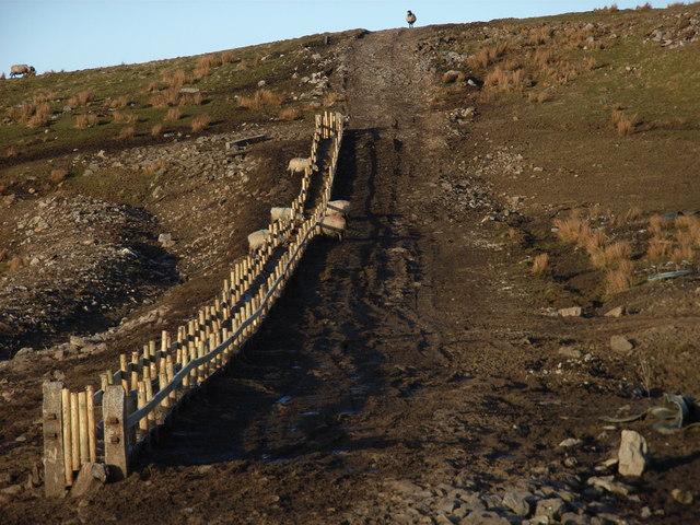 A large trough near Green Hill