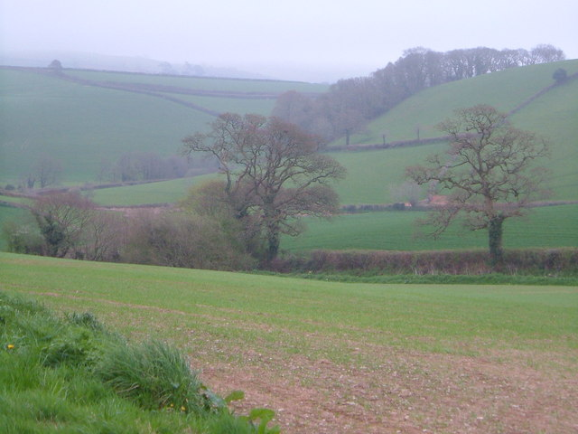 Harbourne valley near East Leigh