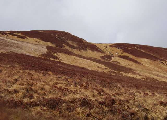 Slopes of Cnoc Craggie