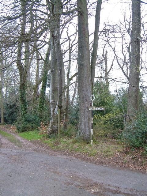 Haydon Common