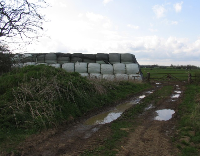 Bales and track