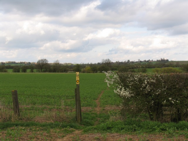 Footpath over the fields