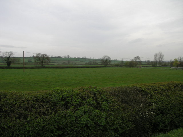 Hedge and Pasture