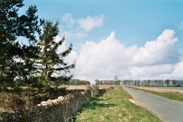Copse on road to Churchill