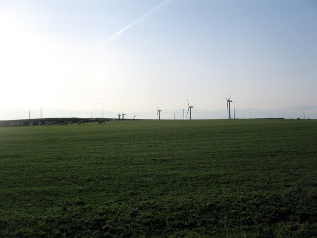 Wind turbines - a new crop