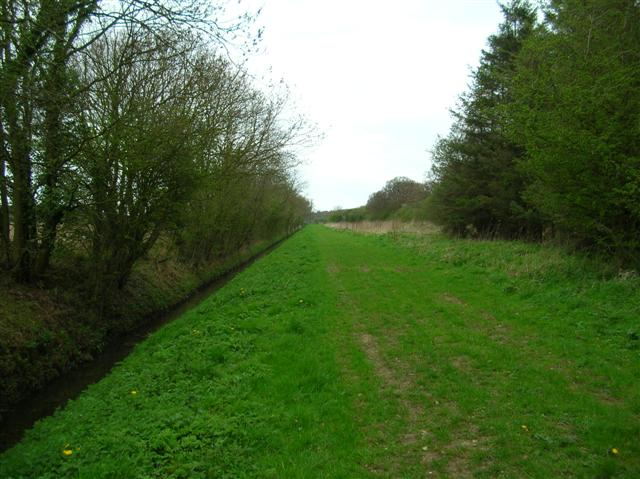 Bridleway above Lockwood's Plantation