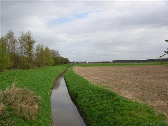 Dyke near Pool Bridge Farm