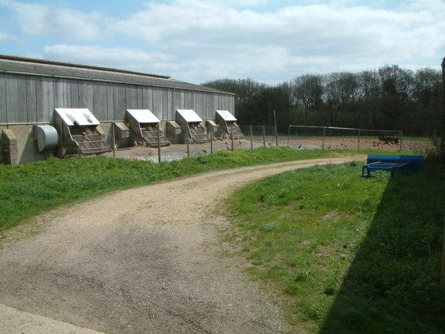 Chicken Farm, Woodlands, Dorset