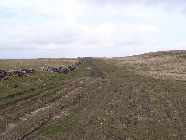 Busk Lane