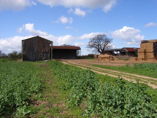 Barns near Marsh Baldon