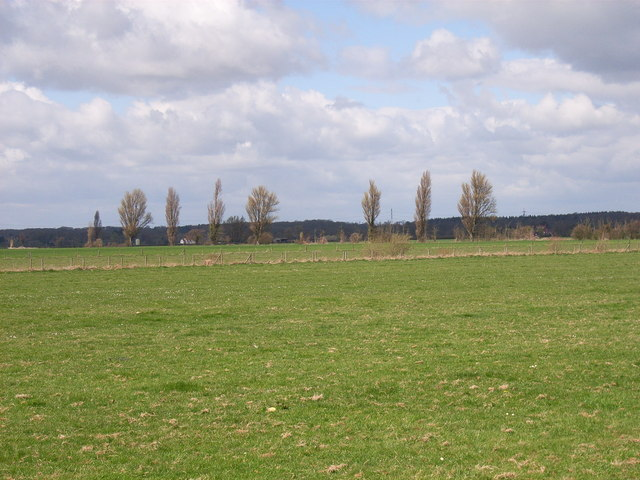 Thames-side meadows, Little Wittenham