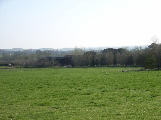 Field above North Farm