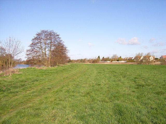 Thames-side meadows, Dorchester