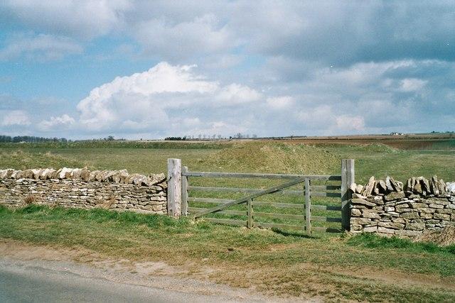 Knollbury earthwork near Chadlington