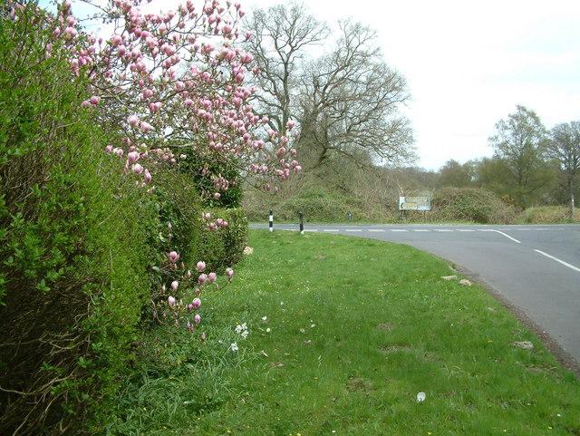 Road Junction B3081