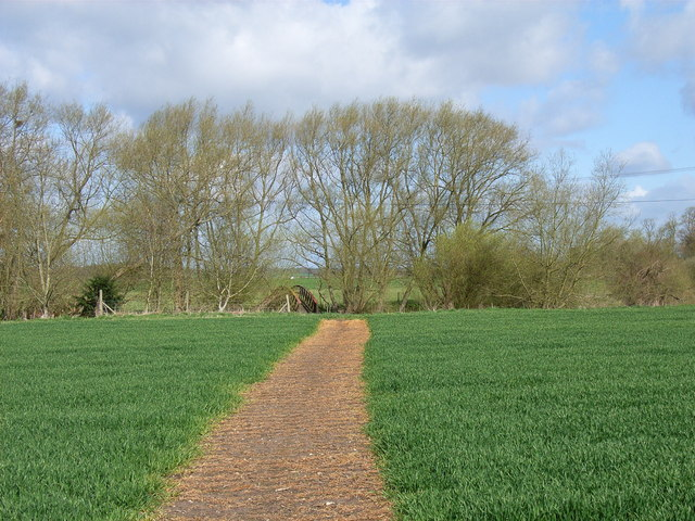 Footpath at Lower Grange