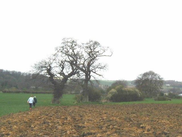 Walking to Helmsley