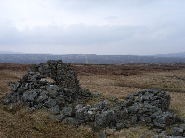 Ruin near Moss Burn
