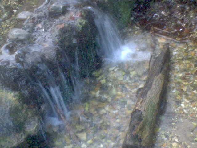 Water-log