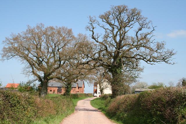 Nynehead: towards Blockhouse Farm