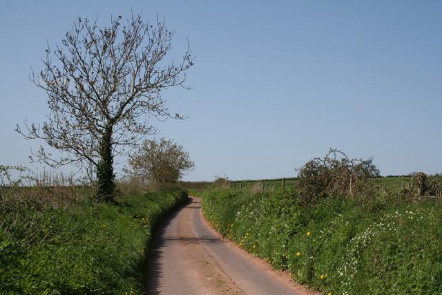 Milverton: near Luckham Farm
