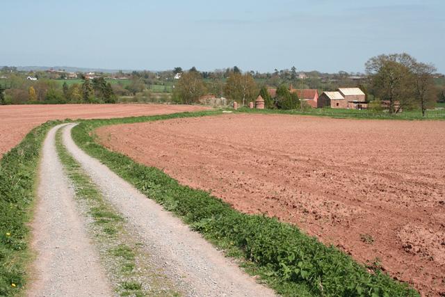 Milverton: towards Garnival's Week Farm
