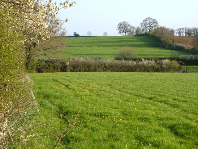 View near Higher Burraton