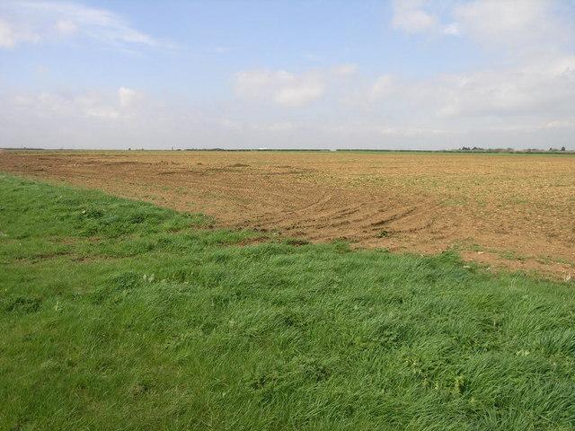 Big Flat Field