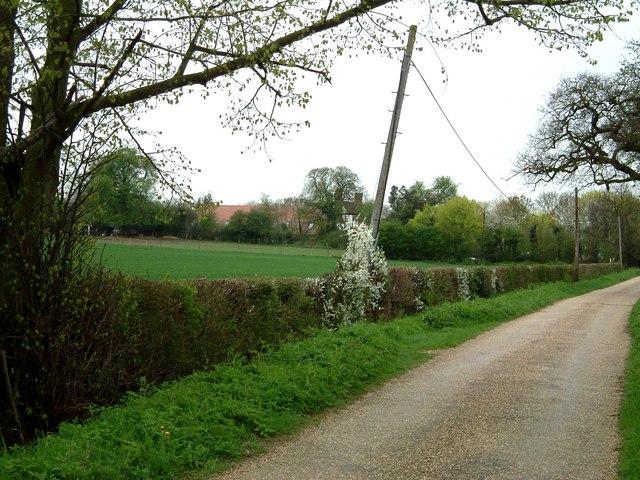 Across the fields to Salisbury Hall
