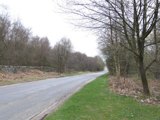 Road on Farley Moor.
