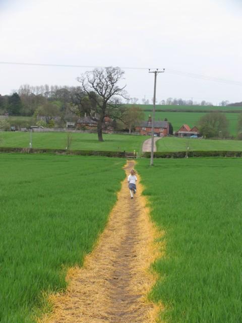 Yellow path towards Barkby