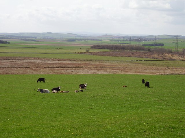 Pasture, Cauldside